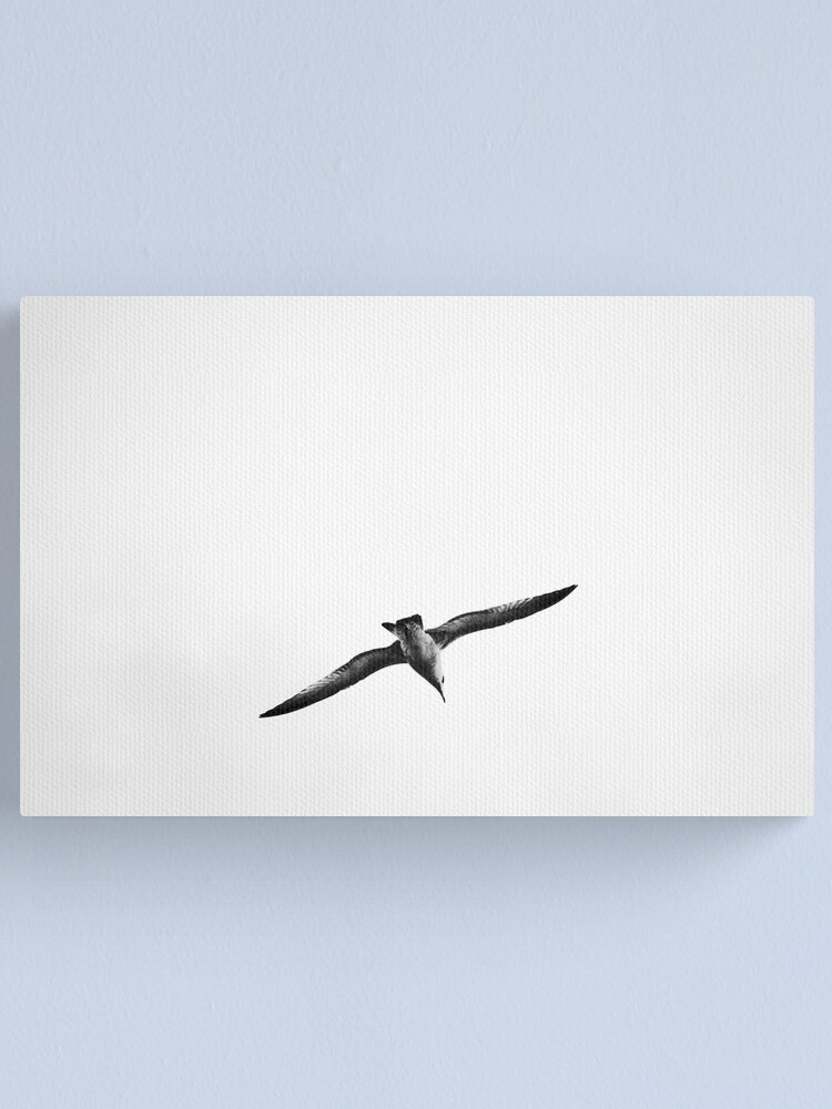 Alternate view of Seagull Canvas Print