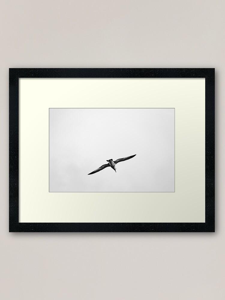 Alternate view of Seagull Framed Art Print