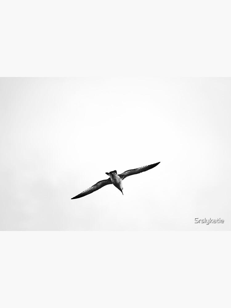 Seagull by Srslykatie