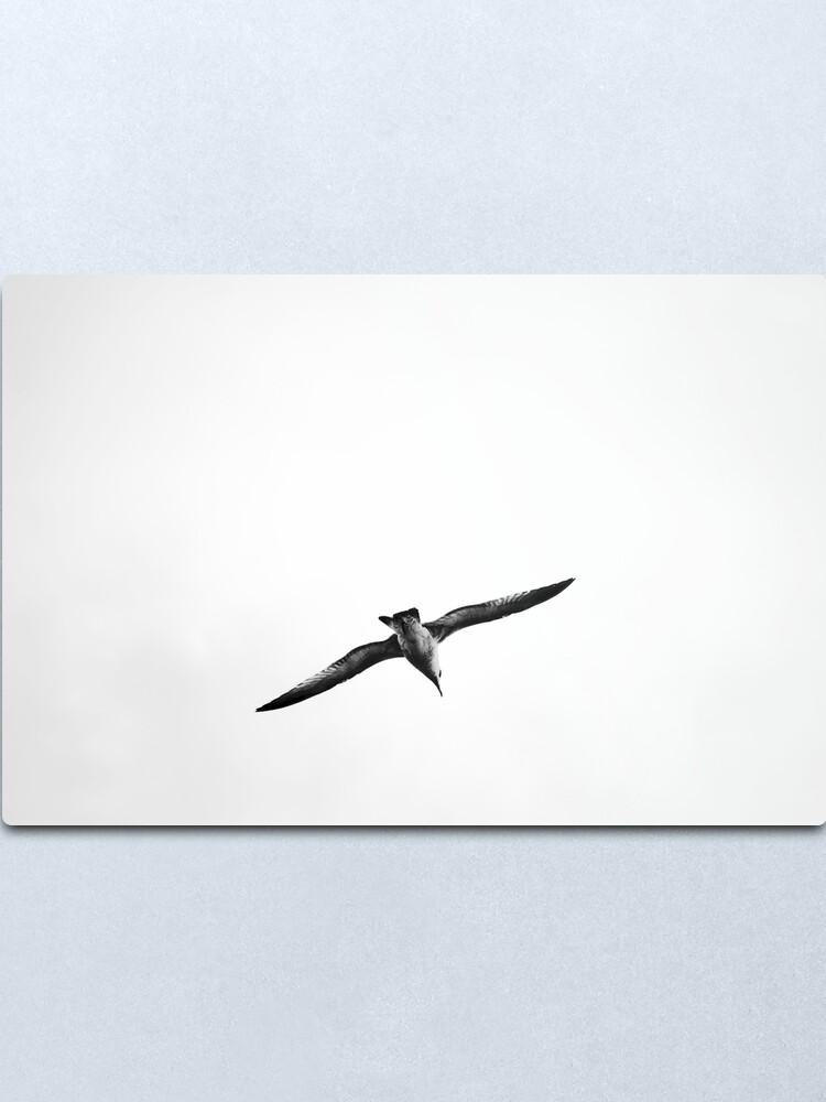 Alternate view of Seagull Metal Print
