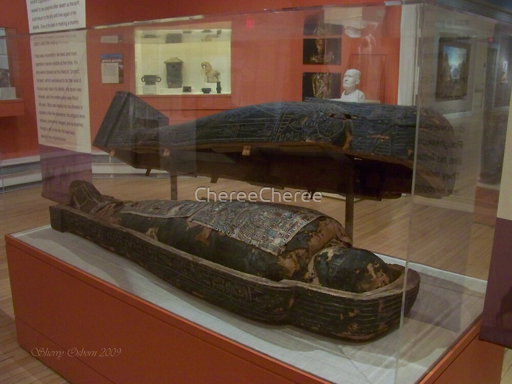 Mummy's Tomb by ChereeCheree