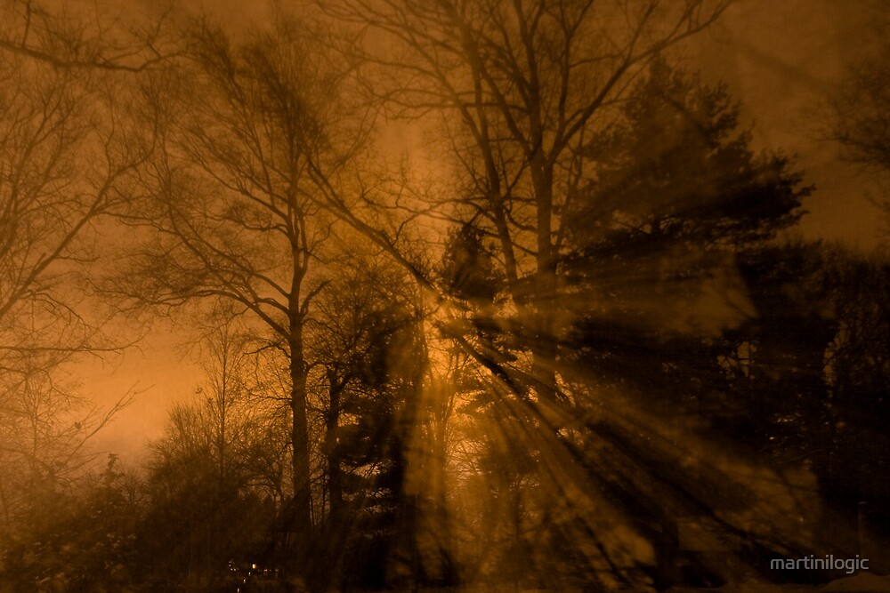 WinterLight by martinilogic