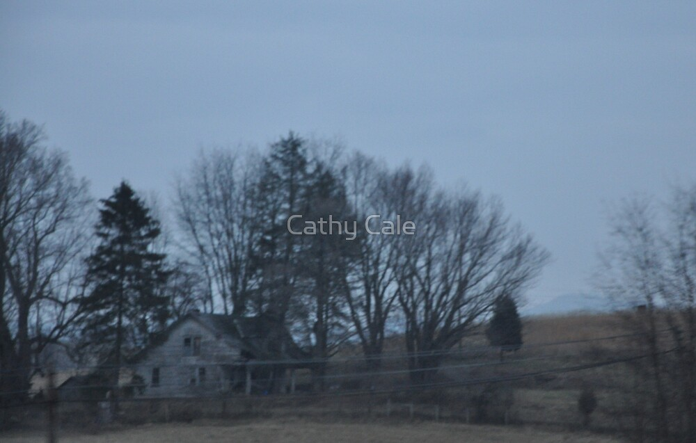 Still Standing by Cathy Cale