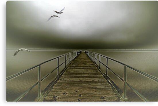 geese flight by ALEX GRICHENKO