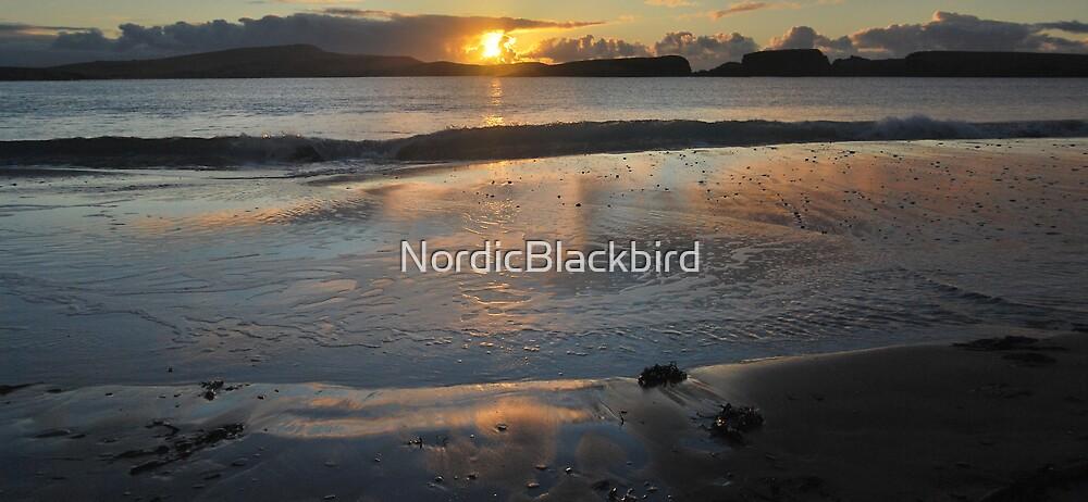 descent by NordicBlackbird