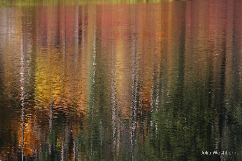 Reflection by Julia Washburn