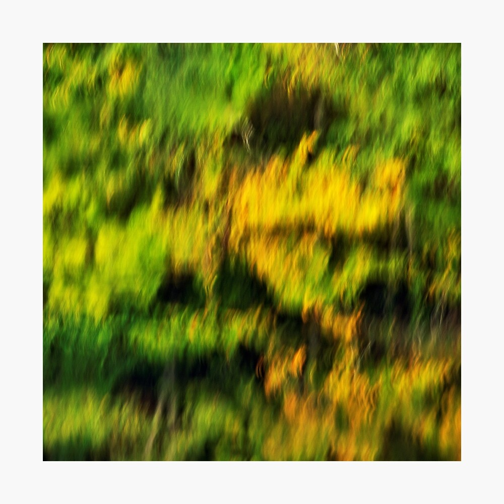Abstract autumn colours reflected in the river Photographic Print