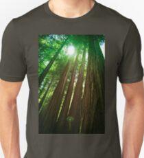 Redwood Trees Unisex T-Shirt