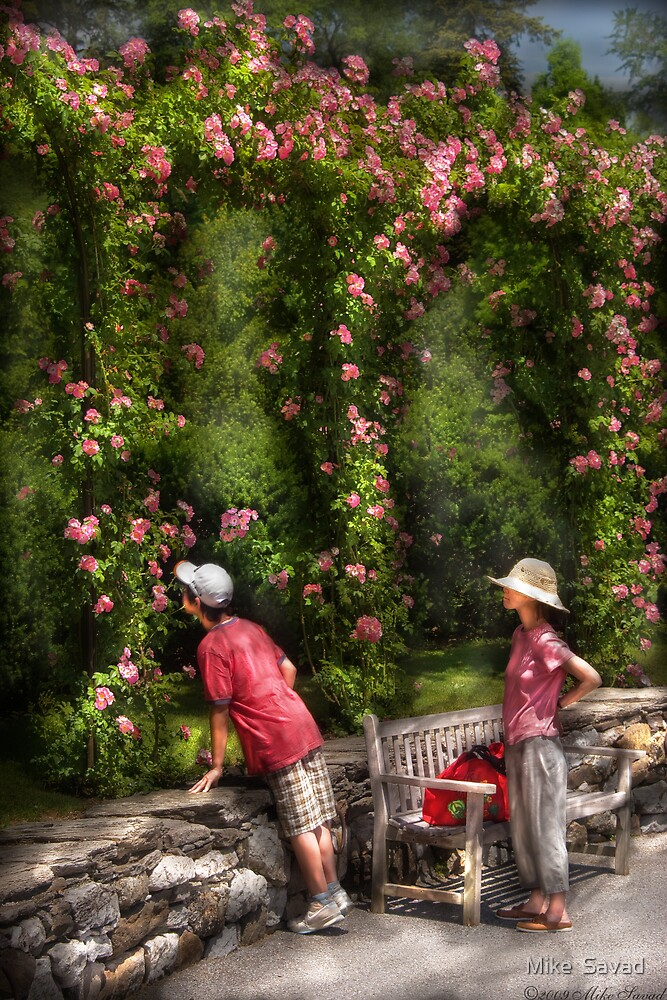 Smelling the Roses by Michael Savad