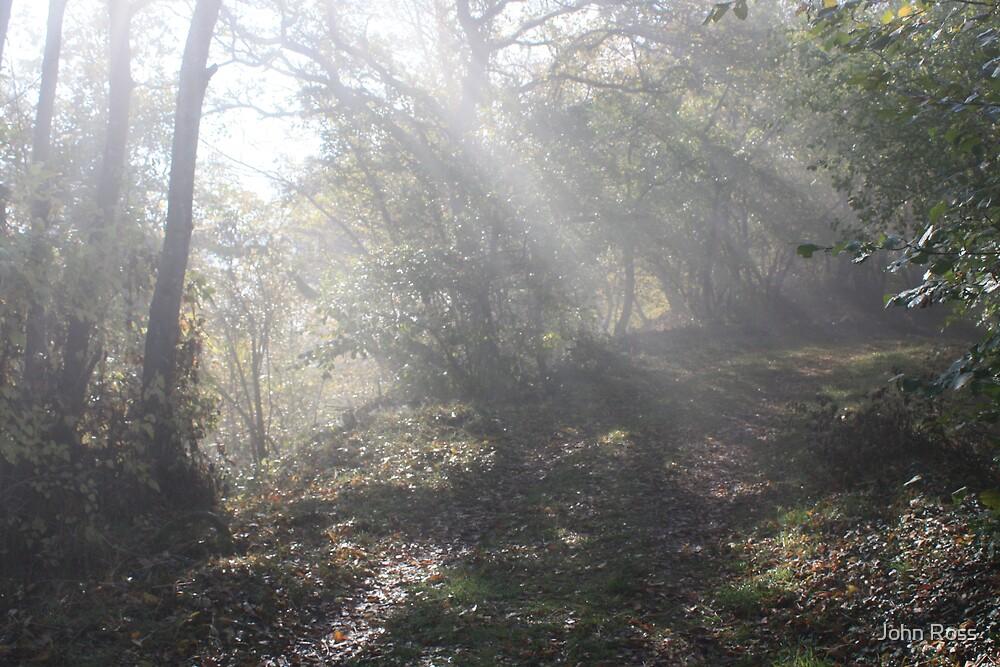 Starkenberg morning mist by John Ross