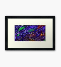 Picture 201503 Justin Beck Purple Haze Framed Print