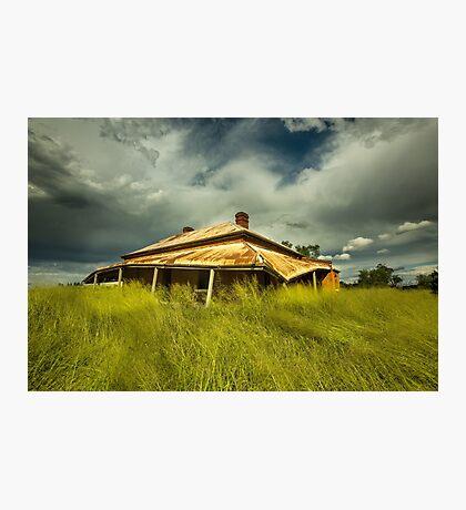 My Green Grass Skirt Photographic Print