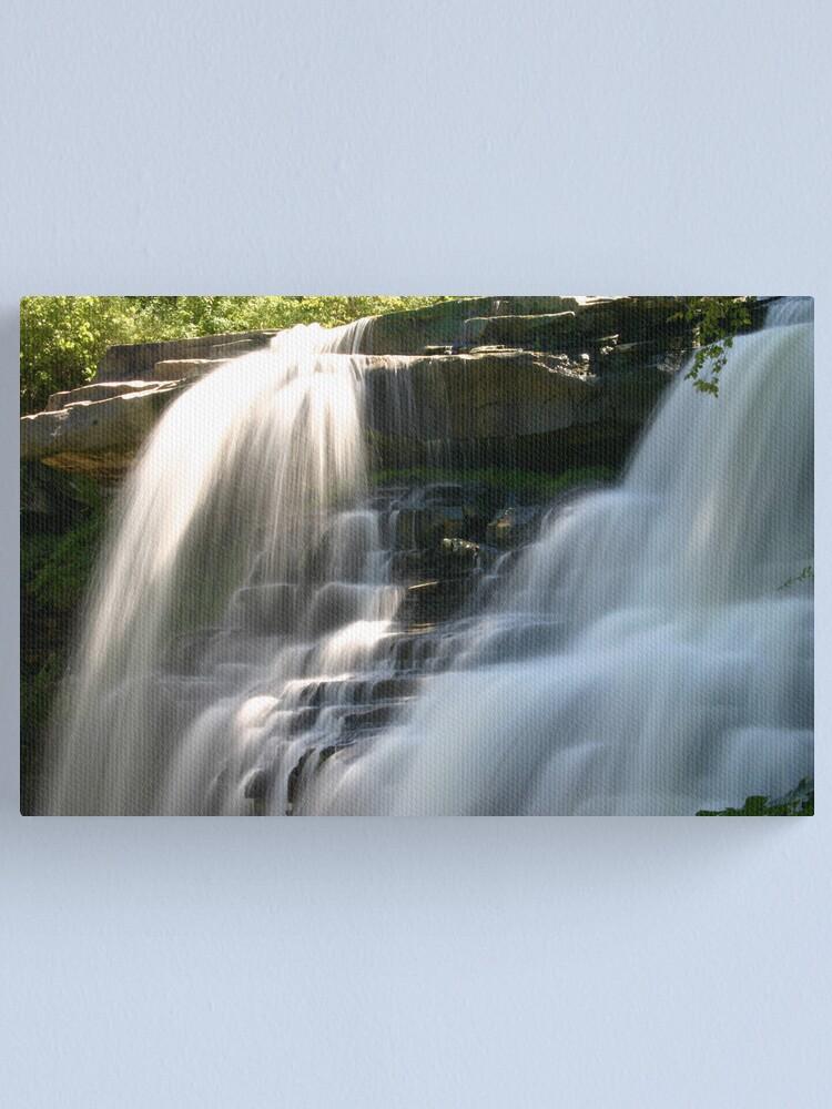 Alternate view of Brandywine Falls Canvas Print