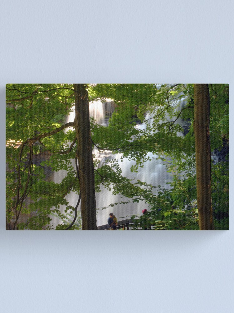 Alternate view of Brandywine Falls Canvas Print