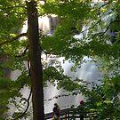 Brandywine Falls by Karl R. Martin