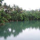 Green River by Joeltee
