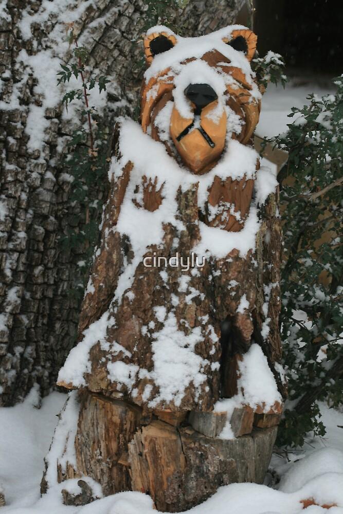 Snow Bear by cindylu
