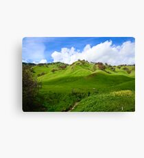Northern California Countryside Canvas Print