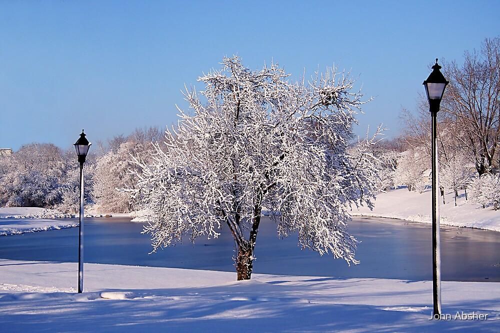 Winter Scene 4 by John Absher