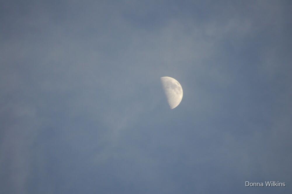 Half Moon Risin' by Donna Wilkins