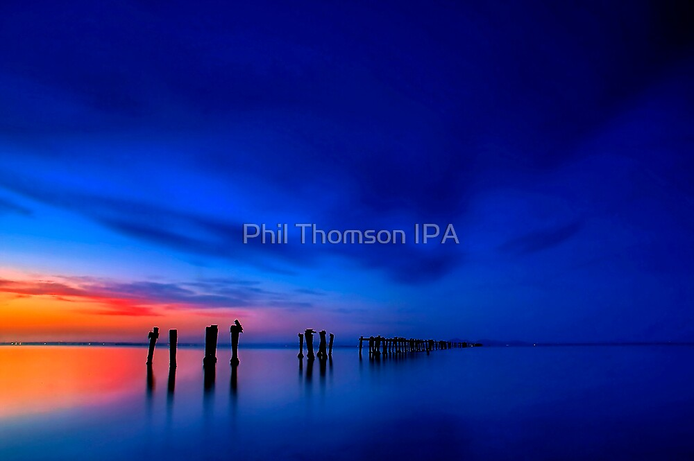 """Summer Evening at Fairy Dell"" by Phil Thomson IPA"