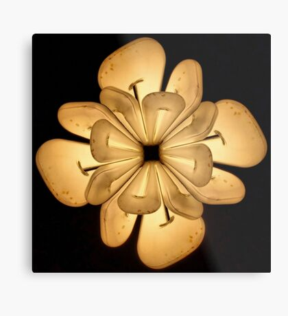 LIGHTFLOWER Metal Print