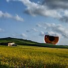 "paysage with iris by Antonello Incagnone ""incant"""