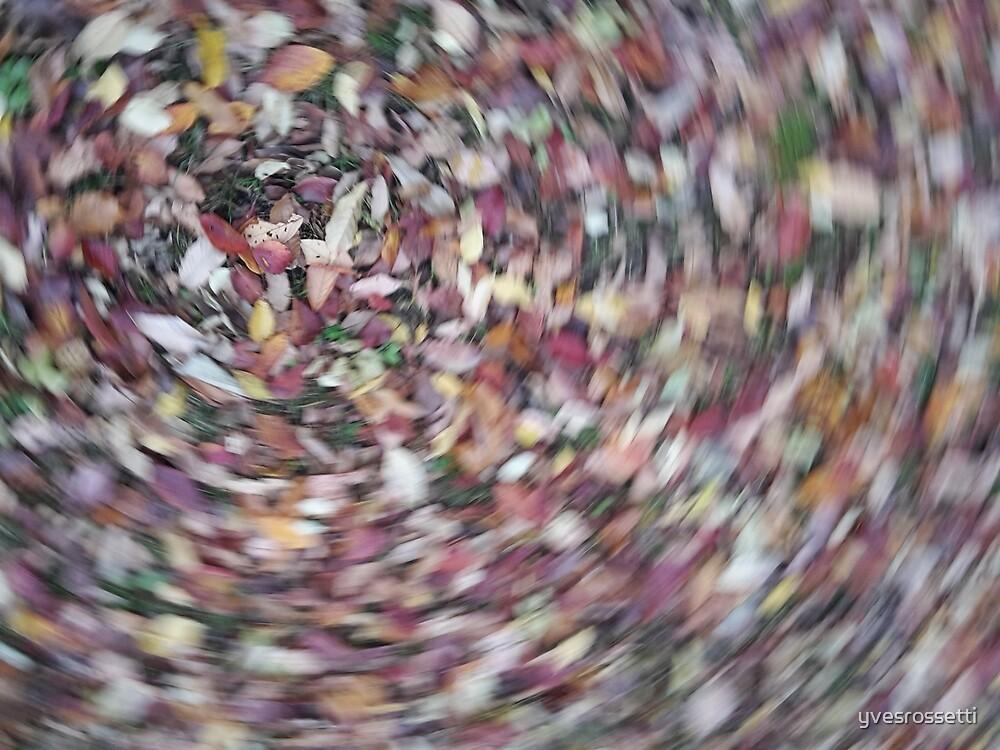 autumn swirl by yvesrossetti