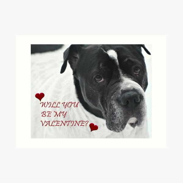 WILL YOU BE MY VALENTINE? FROM SNOOPY Art Print