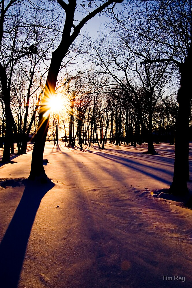Winter Sunset by Tim Ray