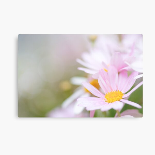 I believe in pink, I believe that laughing is the best calorie burner... Metal Print