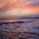 Morning on the coast by peaky40
