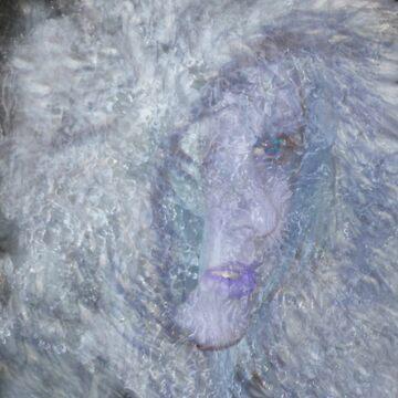 The Ice Queen von RavenMayfair