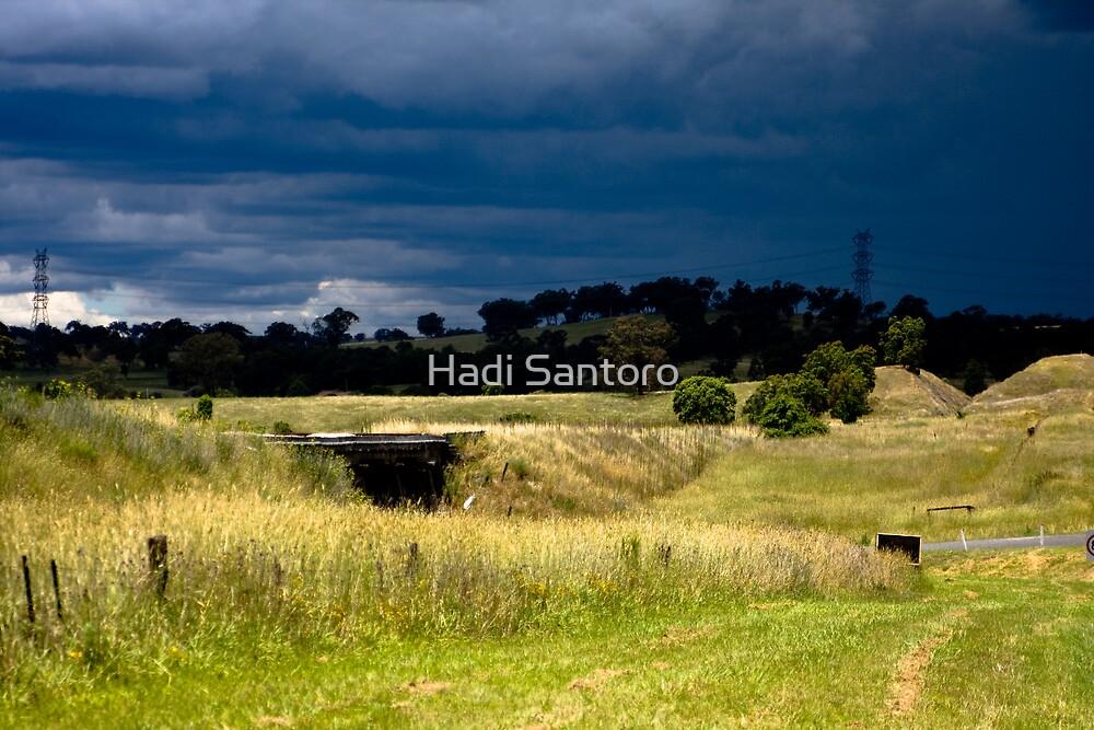 Almost Rain by Hadi Santoro