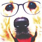 The Wise Spectacled Dog by zachsymartsy
