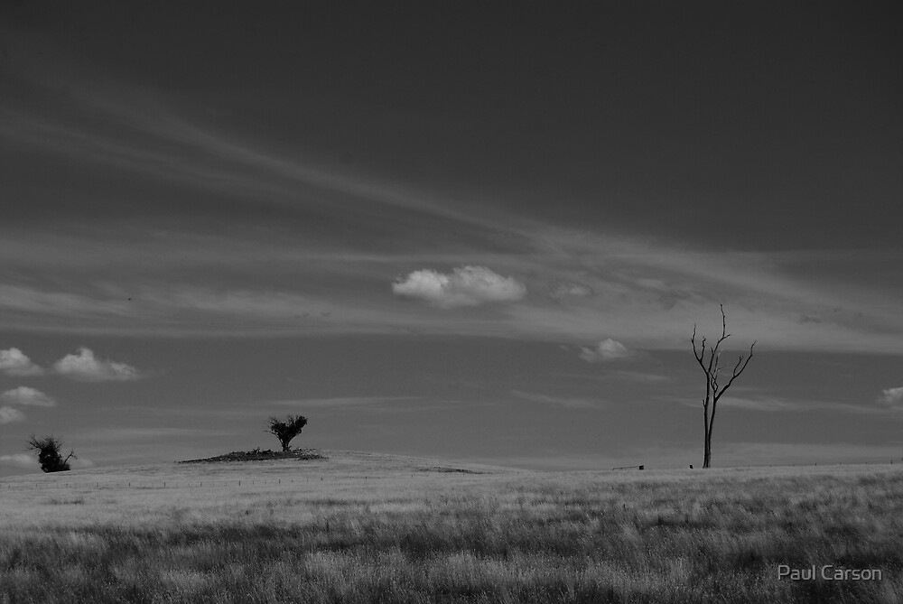 Isolation by Paul Carson