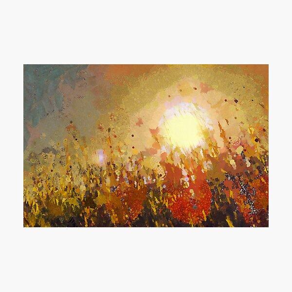 Autumn Sun Photographic Print