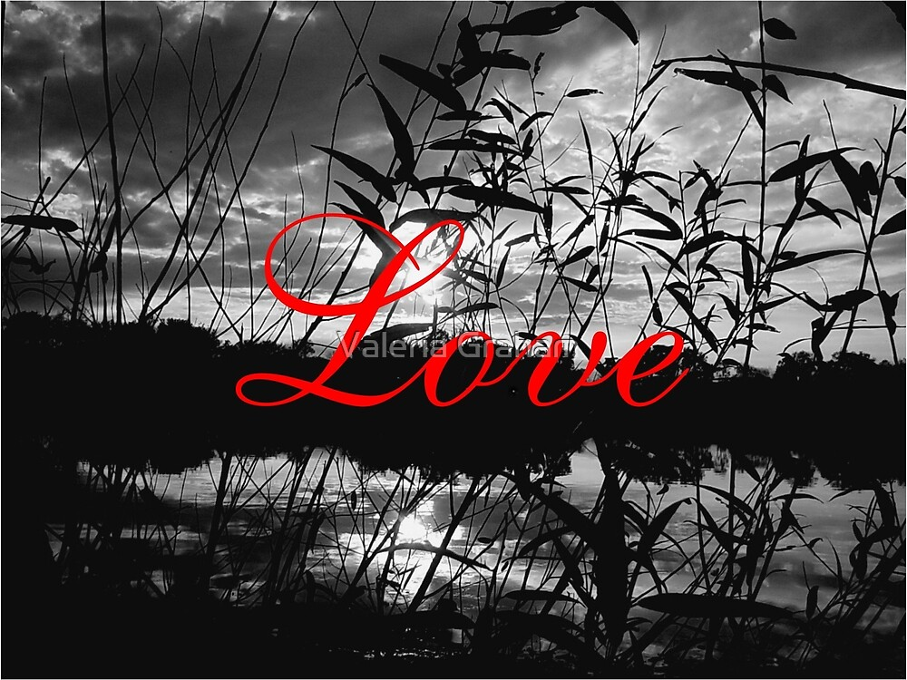 Love, red, black and white by Valeria Lee