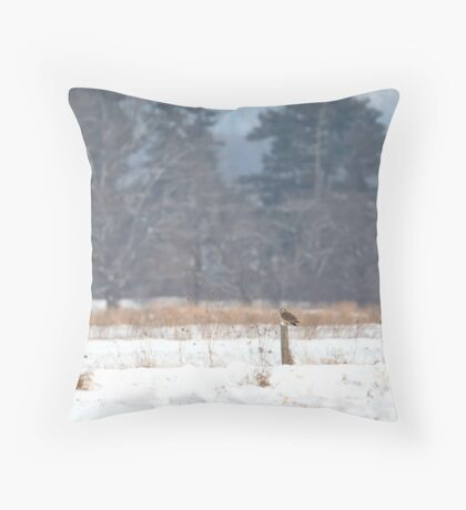 Short-Eared owl on post in winter Throw Pillow
