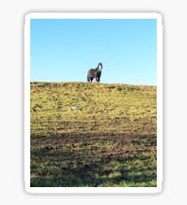 Horse on a hill Sticker