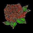 Celtic Rose by Rose Gerard