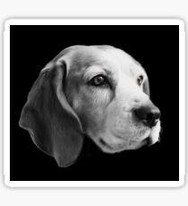 Beagle Head Sticker