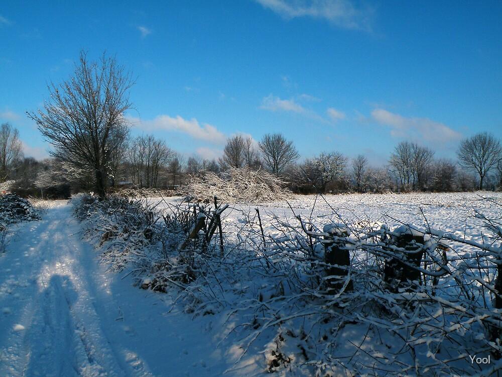 Walking in a winter wonder land... by Yool
