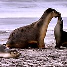 It Must Be Love by Varinia   - Globalphotos