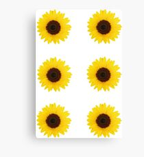 Six Sunflowers Canvas Print