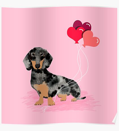 Dachshund love heart balloons valentines day pet portrait doxie lover  Poster