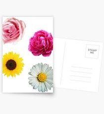 Flowers Set Postcards