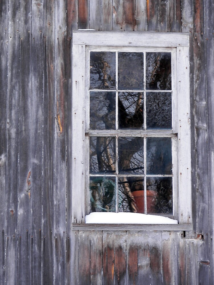 The Window on the Barn by madmac57