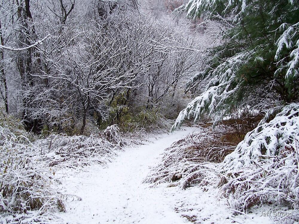 Winter Path by Jeff stroud