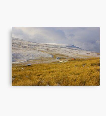 Burnt Moor - Birkdale Common #2 Canvas Print